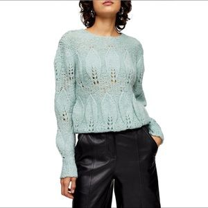 NWT TopShop | Petal Pointelle Sweater